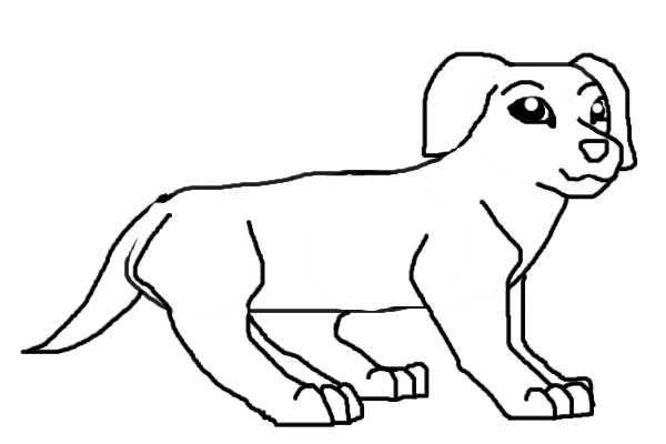Line Drawing Dachshund : View topic dachshund line art chicken smoothie