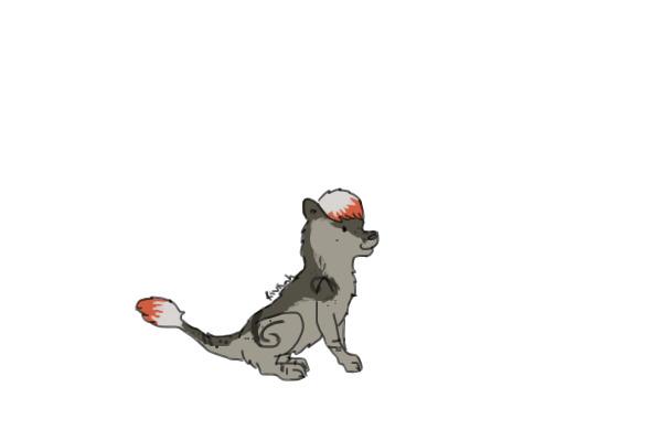 shatter's kiamara Image
