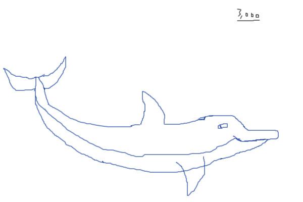 Dolphin Line Art Feet