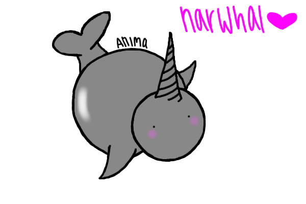 how to make a narwhal
