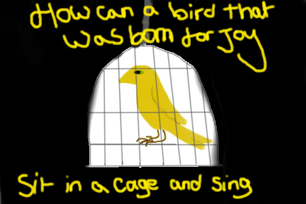 The Human Soul Is Like A Bird That Is Born In A Cage: How Can A Bird That Was Born For Joy Sit In A