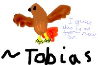 Tobias, the red-tailed hawk