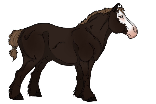 View Topic Prs Flaxen Liver Chestnut Breeding Stock Paint