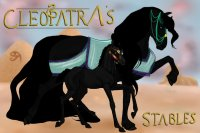 Cleopatra's Stables' Arabians