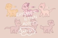 rhys' kitten adopts - big wip!