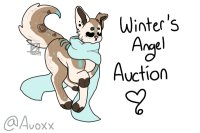 Winter's Angel || Character Auction