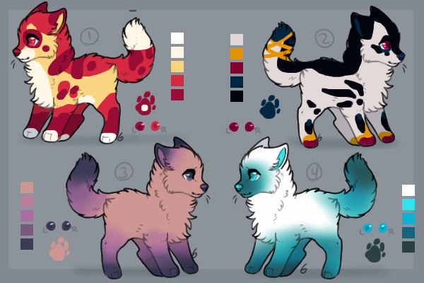 Colorful doggo adopts closed