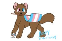 Transgender Pride - Happy Pride month!