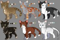 some catte adopts