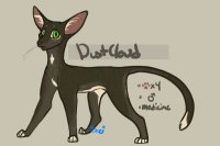 dustcloud // pansexual // my literal child