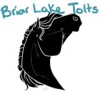 Briar Lake Tolts Icons