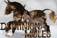 Dominion Draft Mules Marking welcome