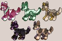 pup adoptables (all sold)
