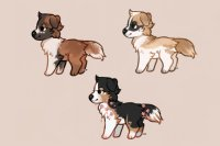 ✦ working dog adopts +[ closed ]+