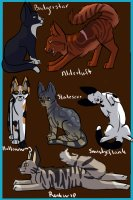 Warrior Cat OCs