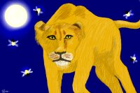 The lion and the fireflies