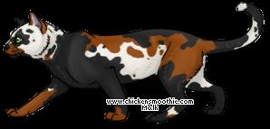 http://www.chickensmoothie.com/pet/1278690&trans=1.jpg