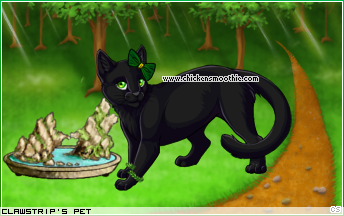 My cat Nightfur 13011507&trans=1