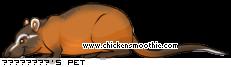 http://www.chickensmoothie.com/pet/19215807&trans=1.jpg