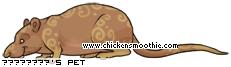 http://www.chickensmoothie.com/pet/20710460&trans=1.jpg