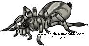 http://www.chickensmoothie.com/pet/2310370&trans=1.jpg
