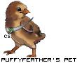 http://www.chickensmoothie.com/pet/235791112&trans=1.jpg