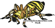http://www.chickensmoothie.com/pet/2811597&trans=1.jpg