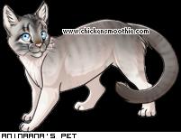 My cat Silvereye 31491970&trans=1