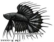 http://www.chickensmoothie.com/pet/4270539&trans=1.jpg