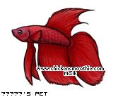 http://www.chickensmoothie.com/pet/4270543&trans=1.jpg