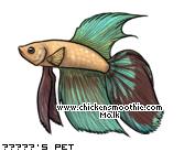 http://www.chickensmoothie.com/pet/4270545&trans=1.jpg