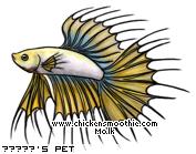 http://www.chickensmoothie.com/pet/4270549&trans=1.jpg