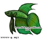 http://www.chickensmoothie.com/pet/4270555&trans=1.jpg