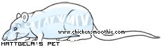Chickensmoothie.com - Page 2 475000