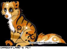 Dragon's Pets 5737521&trans=1