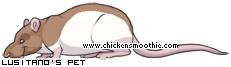 http://www.chickensmoothie.com/pet/761671.jpg