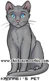 http://www.chickensmoothie.com/pet/763711.jpg