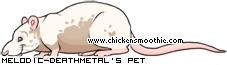 http://www.chickensmoothie.com/pet/763749.jpg