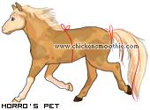 http://www.chickensmoothie.com/pet/833115.jpg