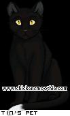 http://www.chickensmoothie.com/pet/9071517&trans=1.jpg